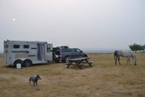 Grasslands camp, downsized
