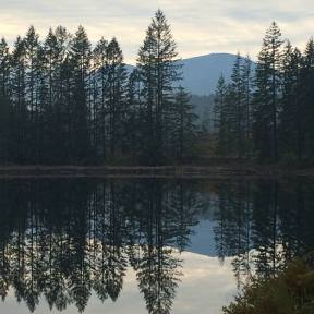 Timberlands Lake